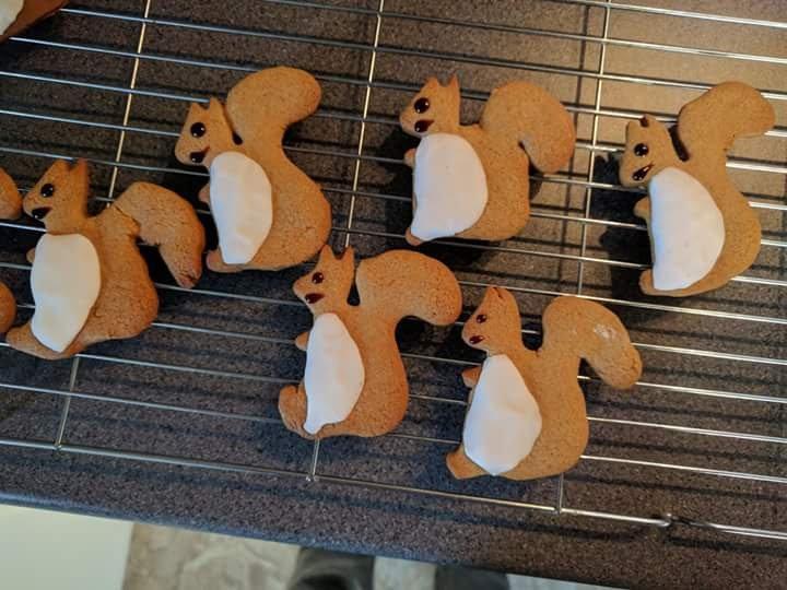 Squirrel biscuits