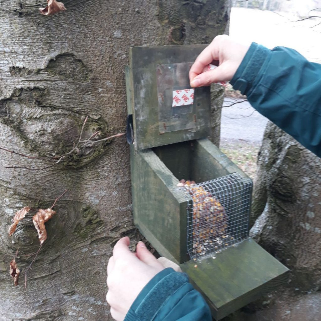 Close up of hands placing sticky tab on inside of feeder box lid