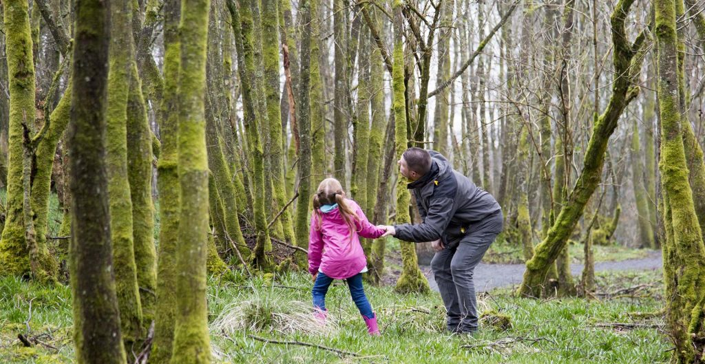 Man and small girl holding hands in wooded area, looking up for squirrels