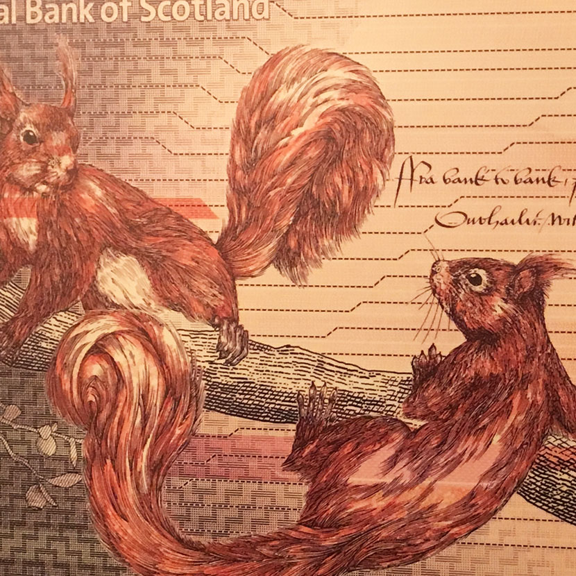 £20 note design featuring 2 red squirrels
