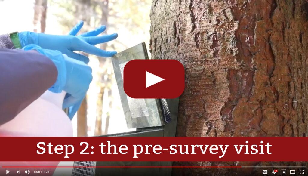 Step 2: pre-survey visit
