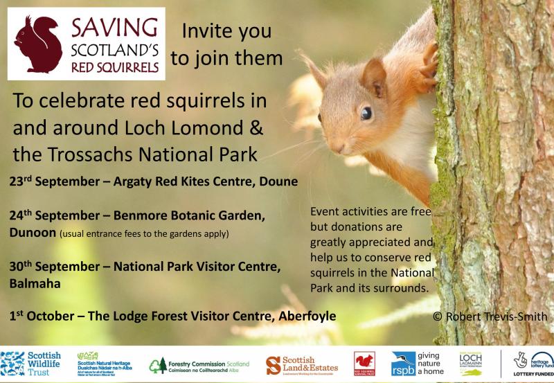 Squirrel week poster