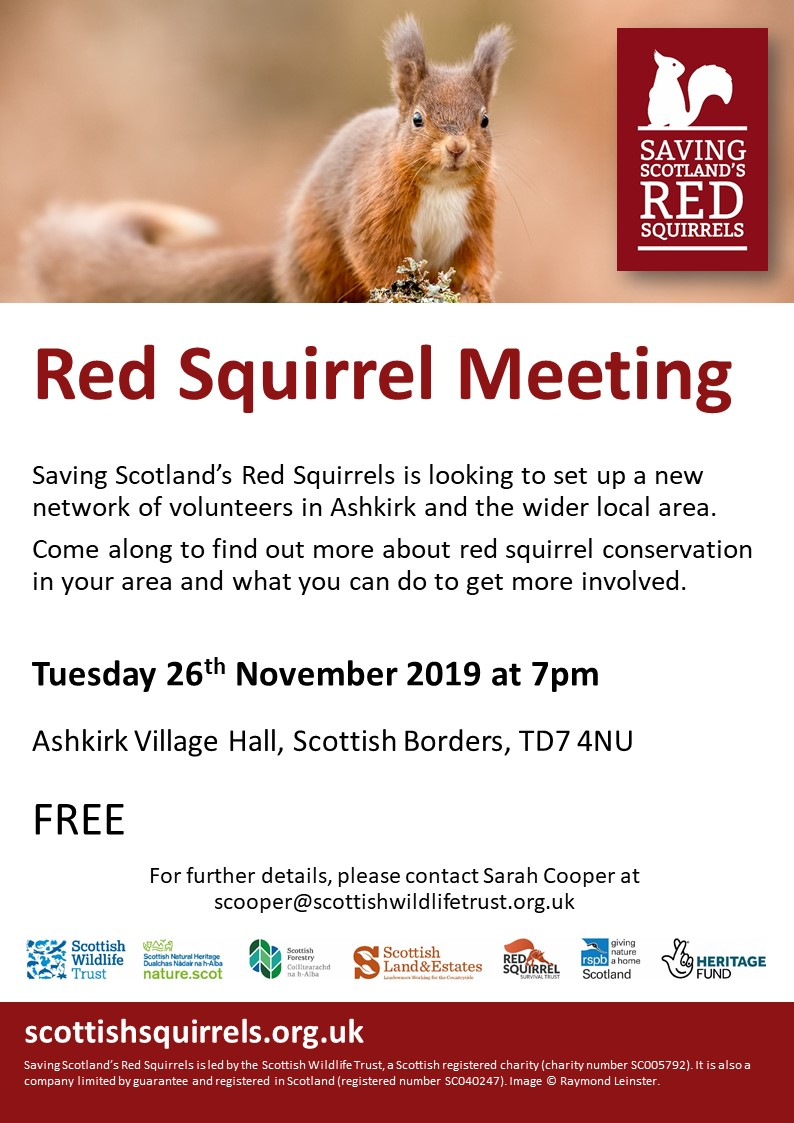 Event poster with red squirrel image
