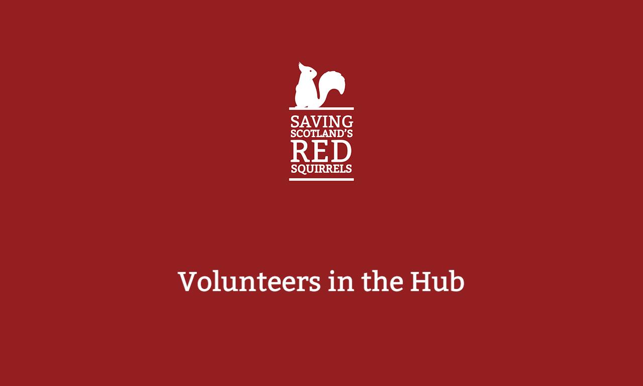 Volunteering and the Community Hub