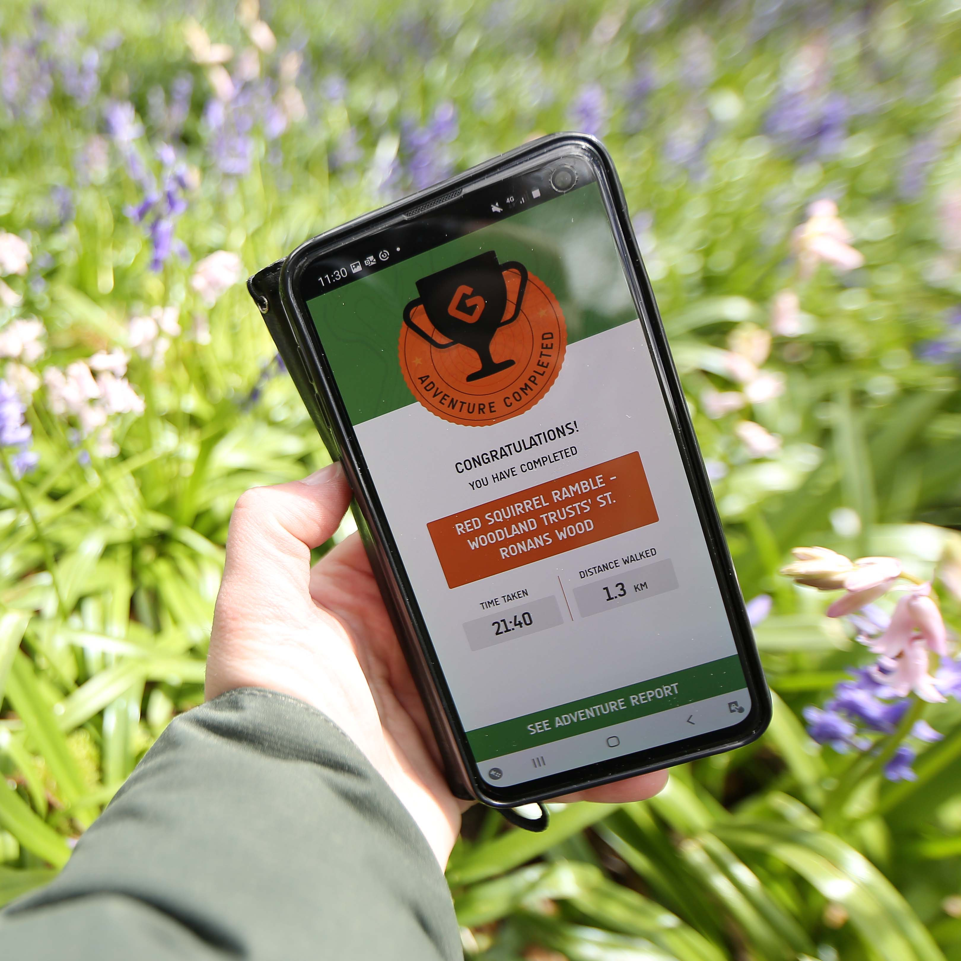 News: Take a red squirrel ramble with new digital walking routes