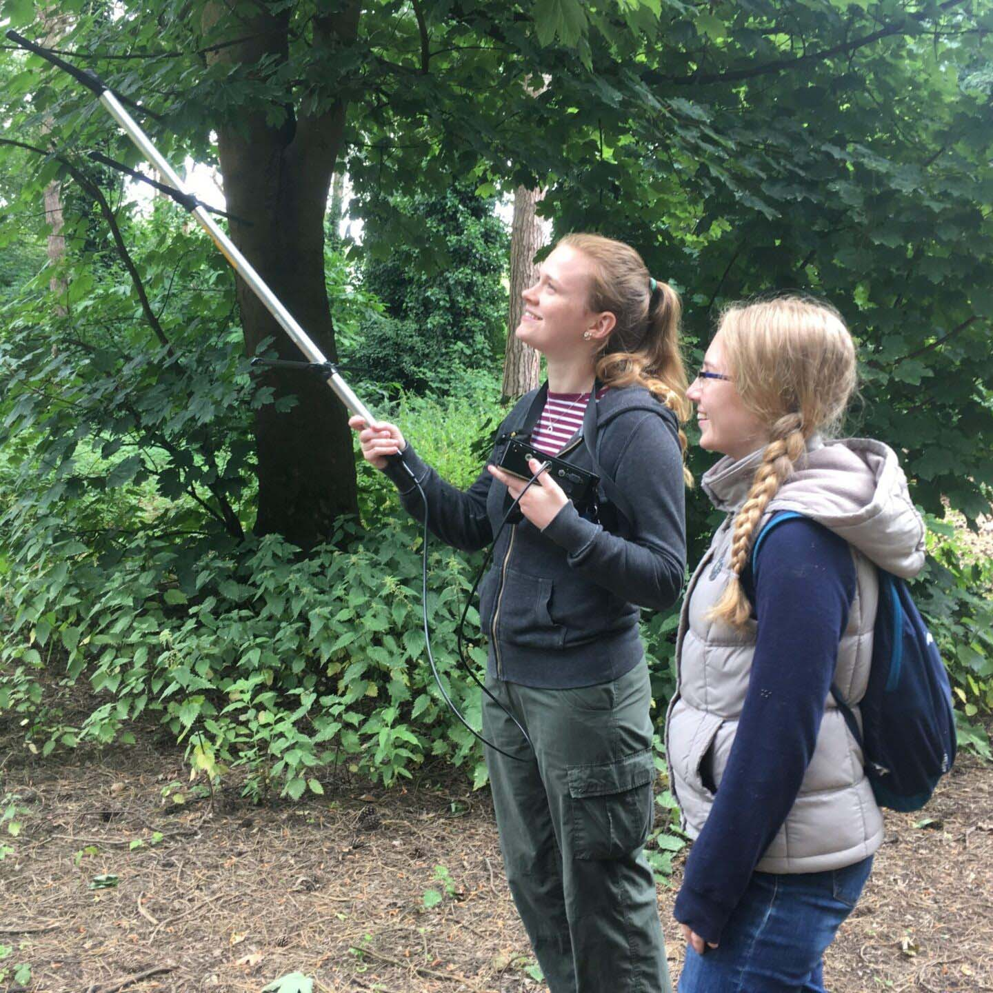 Studying the life of the urban red squirrel
